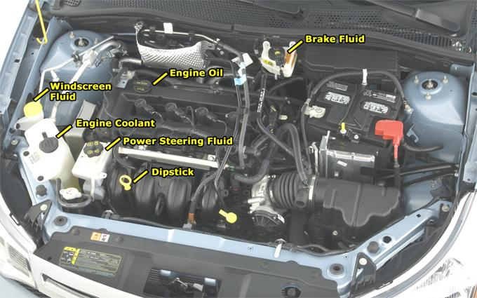 How To Check Your Car Fluids